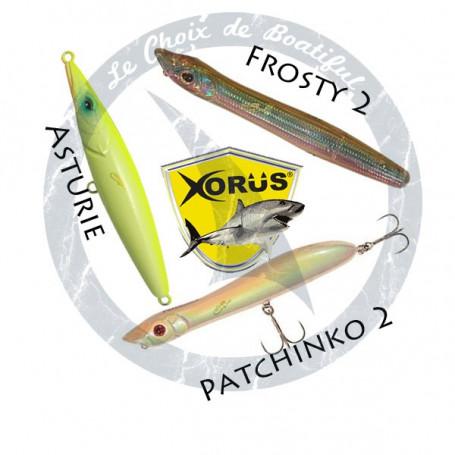 Pack de leurres Xorus Pêche au bar